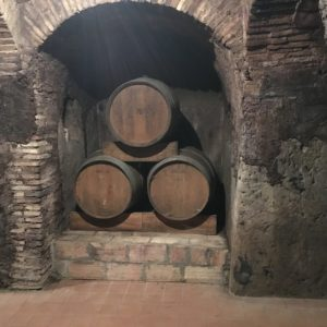 winery castelli romani